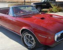 67 Firebird Convertible