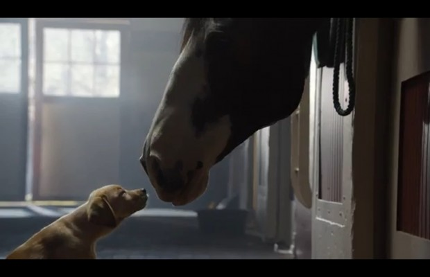 Our FAVE Superbowl Ad So Far!